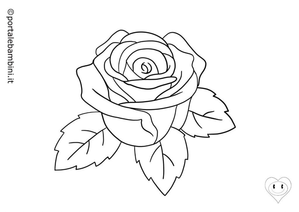 rose da colorare 6