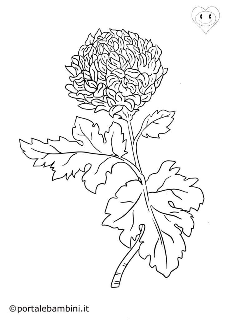 crisantemi da colorare 1