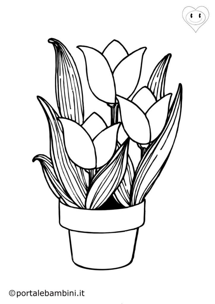 tulipani da colorare 3