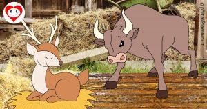 il cervo e i buoi